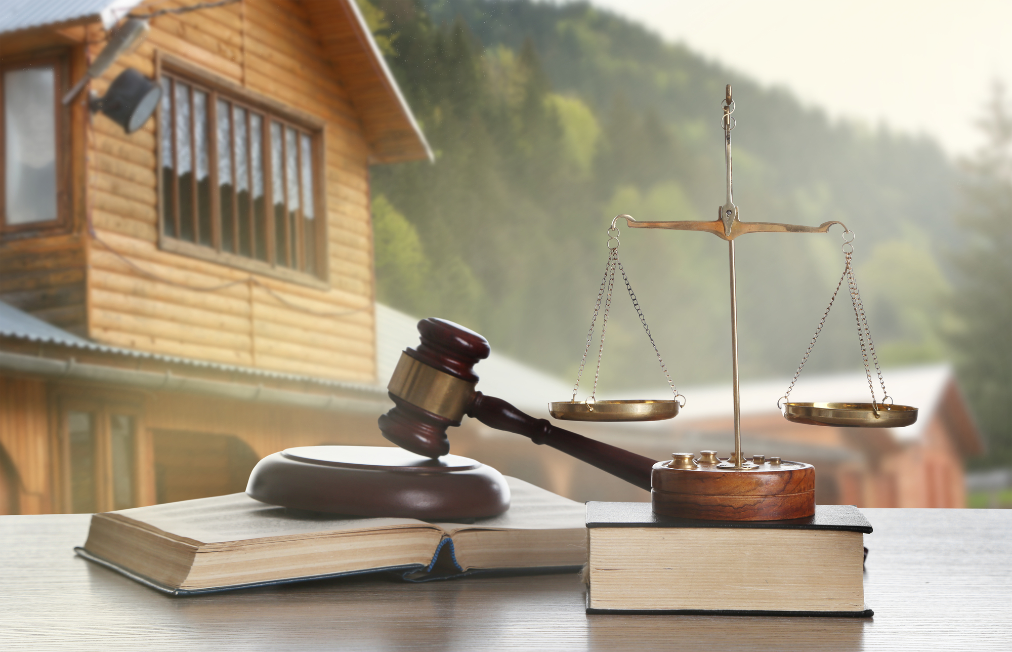 Image of contesting a will